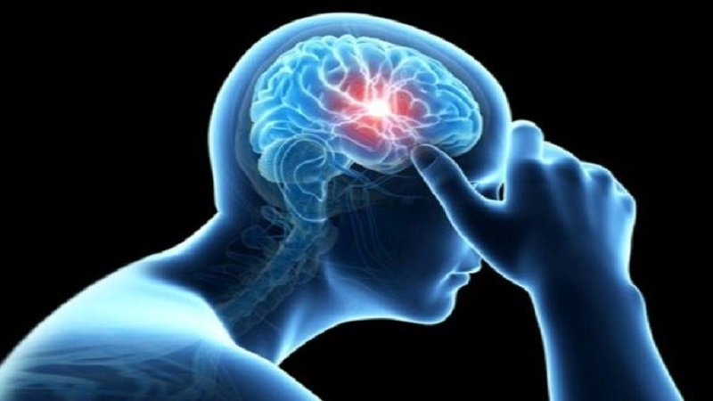 چرا باید در مغز خونرسانی انجام شود؟